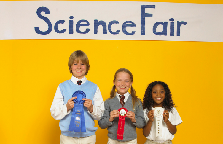 Science Fair Projects - Insect Projects for Elementary Students